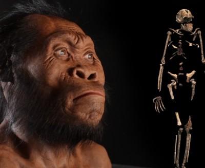 I caratteri misti di <i>Homo naledi</i>